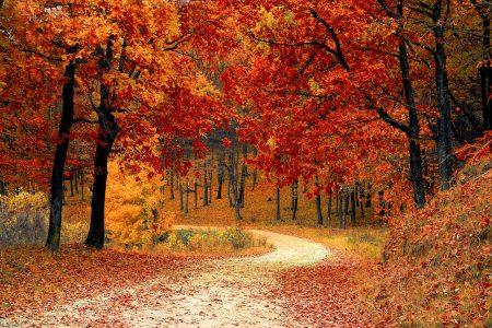 Co nas czeka w październiku?